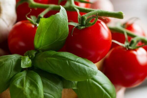 Mozarella Tomate mit Basilikum
